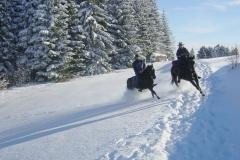 Fotos Breuer Sommer und Winter 073